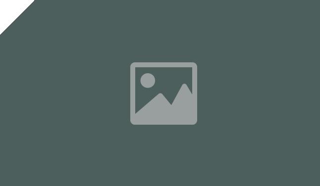 placeholder-full-width